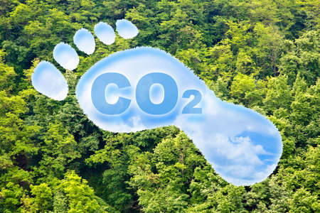 Carbon footprint concept with CO2 text and footprint shape against woodland - CO2 Neutral and ecological concept with foot symbol and cloudy sky Foto de archivo