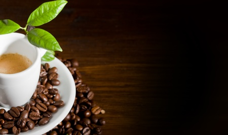 photo of espresso cup over coffee beans with green leaves Stock Photo - 9194250