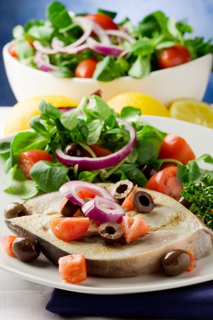 grilled swordfish with mixed salad on white towel in front of blue background Stock Photo - 9512656