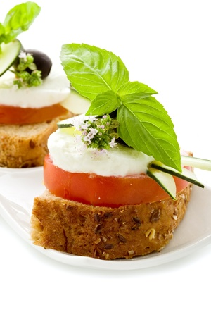 starter: delicious tomato mozzarella starter isolated white background