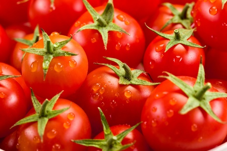 白い背景の上提示非常に新鮮なトマトの写真 写真素材