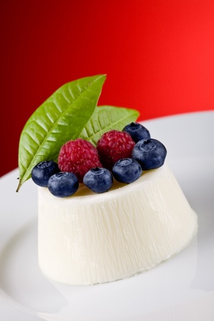 photo of delicious panna cotta with berries on red background  photo
