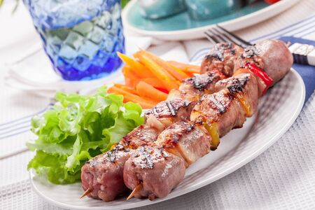Delicious meat skewers with carrots and salad Stock Photo - 13500144