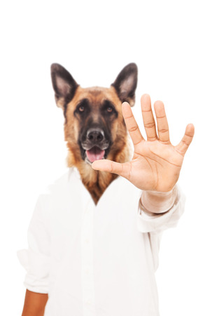 pet therapy: Conceptual phot of stopping animal abuse over white isolated background