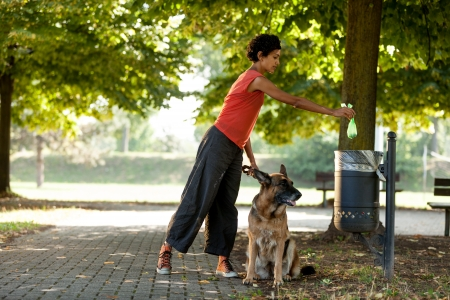 Woman is throwing away the poo of her dog Stockfoto
