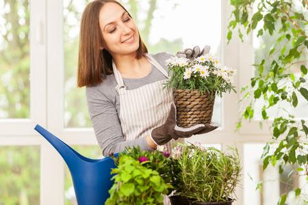 regar las plantas: Mujer joven caucásica haciendo algo de jardinería en casa con sus coloridas plantas Foto de archivo