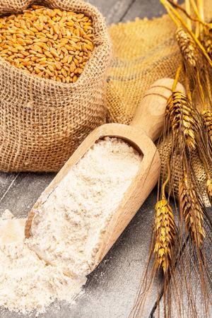 flour: Foto de granos de trigo y la harina en la mesa de madera