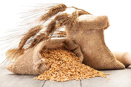 cebada: Foto de granos de trigo y la harina en la mesa de madera