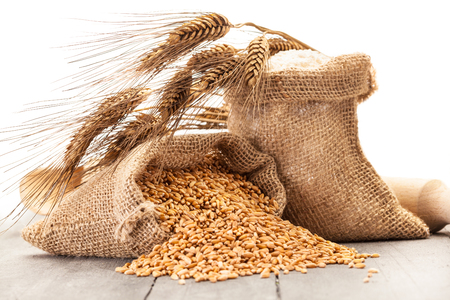 cereal plant: Photo of wheat grains and flour on the wooden table Stock Photo