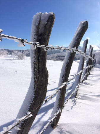 wire: Barbed wire in snow
