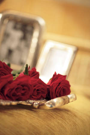 view of red rose on luxury Stock Photo