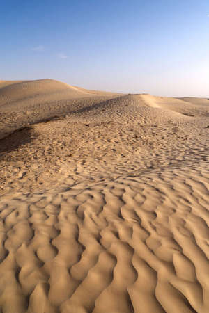 view of the sahara desert on sunset