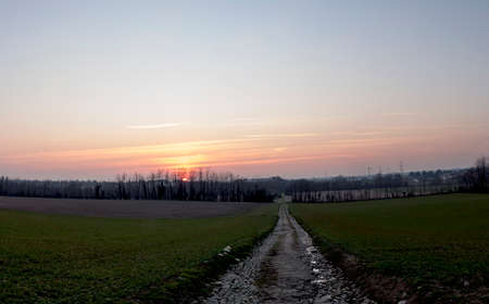 a country lane leading down through the fields into the sunset