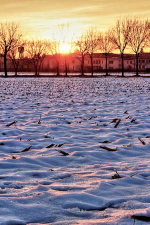 mb: Frosty sunset on the field of Bernareggio MB Lombardy Italy