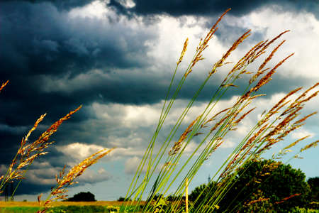A storm rolling over the fields of Vimercate