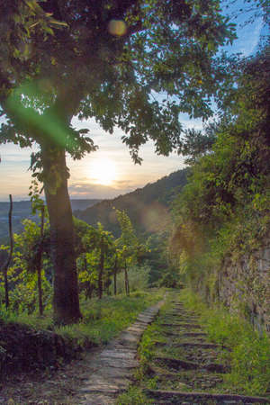 An old stone stairway leading down to the Sunset in Montevecchia town