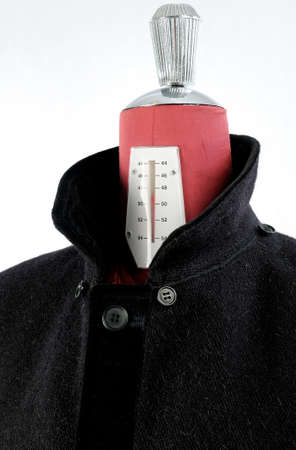 inserts: Woolen black coat, inserts and lining in velvet  Detachable hood