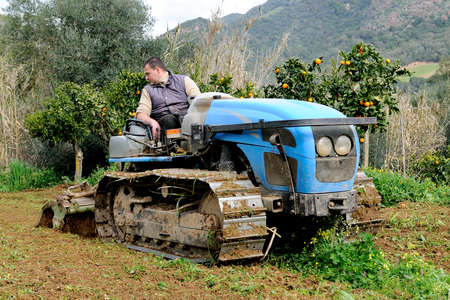Weeding and milling of a vegetable garden with a crawler tractor photo