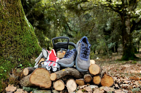 Shoes, protection gloves and glasses to safely use the chainsaw to cut wood in the forest.