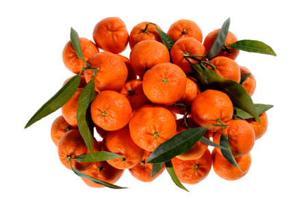 Shot from above of fresh mandarin oranges with leaves freshly picked on white background Stock Photo