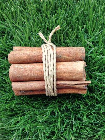 Cinnamon rolls on the artificial grass. Stock Photo