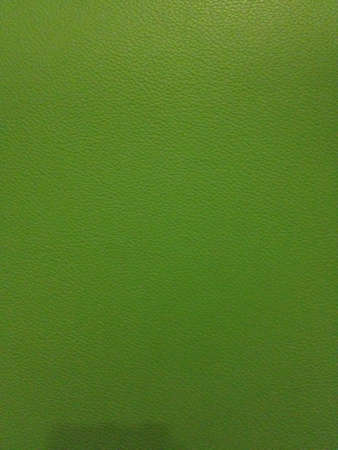 Green color leather texture