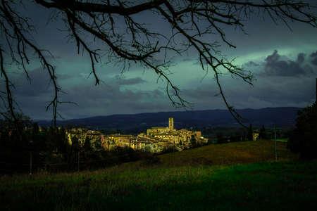 stad achter een boom
