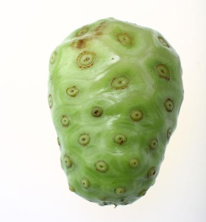 noni fruit: Noni Fruit