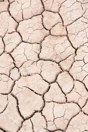 lack water: cracked earth by lack of water