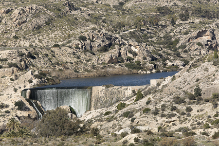 Views of the Elche swamp in winter. Province of Alicante in Spain. Reklamní fotografie