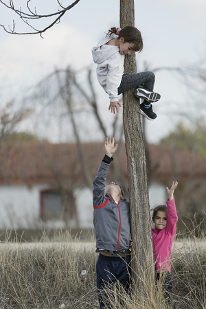 10-year-old girl climbed on a tree and her cousins down. Horizontal shot with natural light Foto de archivo