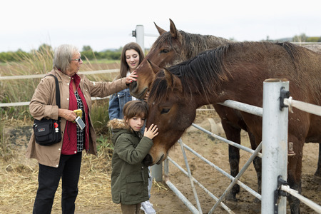 Rojales, Spain. March 4, 2018: Family playing horses in a shelter in Rojales, province of Alicante in Spain. Redactioneel