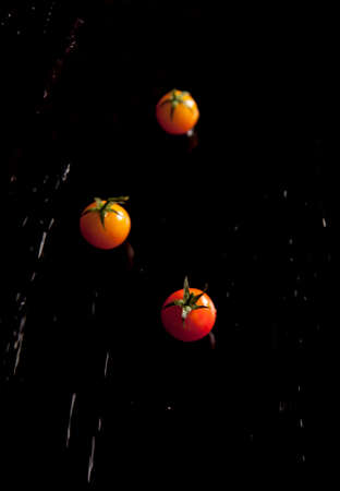 Cherry tomatoes separated with water drops