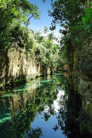 luxuriant: river on a tropical landscape
