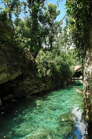 appease: crystal water river on a tropical landscape