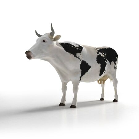 White cow with black patters in the skin shaped like a world map photo