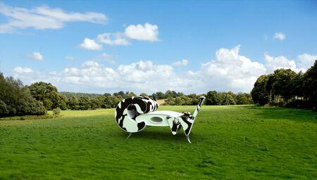 cow hide: Designer�s seat in cow hide in a pasture
