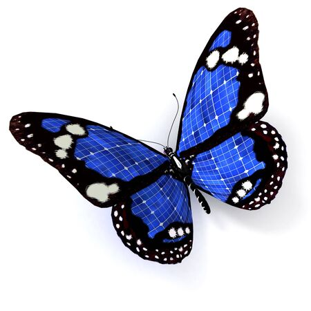 fragility: 3D rendering of a  blue butterfly with solar panel texture Stock Photo