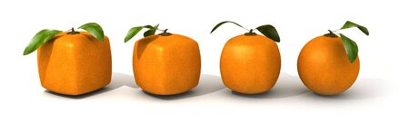 genetically: Line of oranges in different shapes, from cubic to a normal round one Stock Photo