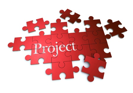 project management:  3D rendering of a forming puzzle with the word Project