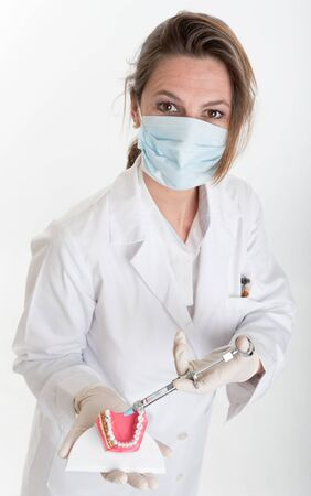 Female dentist holding a dentistry study model and a syringe   photo