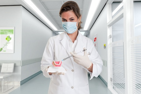 hygienist:    Female dentist holding a dentistry study model and a syringe at the hospital