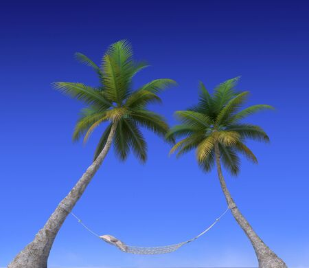 A hammock hanging from palm trees and the sky photo