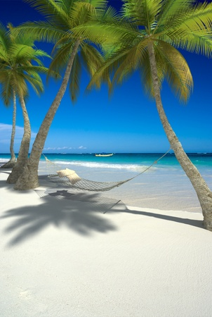 tropics: 3D rendering of a hammock with cushions hanging from palm trees on a tropical beach Stock Photo