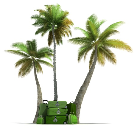 arriving: Island like composition showing tropical vegetation and beautiful green  luggage  Stock Photo