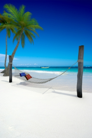 3D rendering of a hammock with cushions on a tropical beach photo