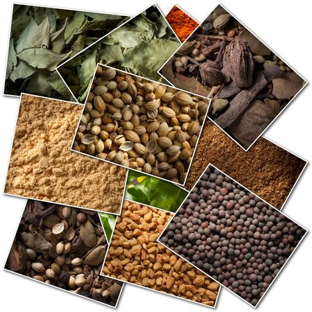 garam: Collection of pictures of different spices