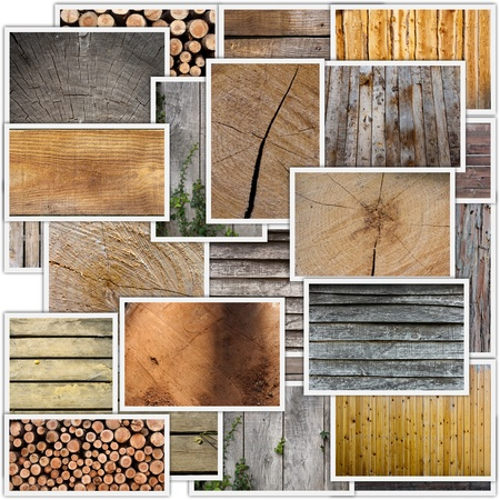 palisade: Collage of different types of woods, planks, floors, timber, tree trunks, etc.   Stock Photo