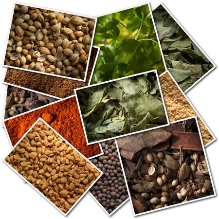 Collection of pictures of different spices photo
