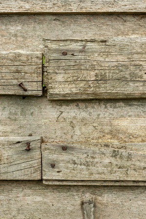 weather beaten: Old weather beaten wooden plank with rusty nail